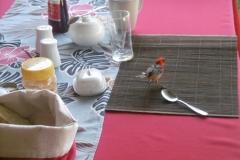 P1010217-Vogeltje-op-onze-ontbijttafel