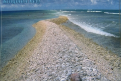 IMG_3357-Kingman-Reef-Charles-Veley