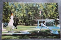 IMG_3361-Midway-Island