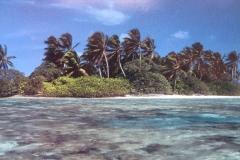 IMG_3365-Palmyra-Atoll-Robert-Shallenberer