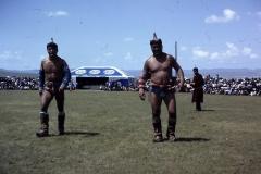 38-03-Nadaam-twee-zwaargewichten