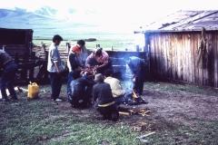 39-14-Mongoolse-bereiding-van-schaap