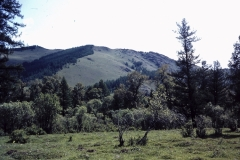 39-39-Terelj-puur-natuur