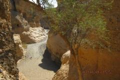 IMG_0245-Sesriem-Canyon