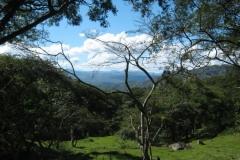 IMG_0860-Nicaragua-bij-Herman-Vandevelde-2