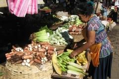 IMG_0994-Nicaragua-Granada