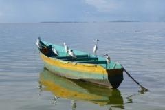 P1040965-Ssese-eilanden