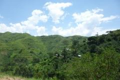 P1050133-Virunga-bergen-in-DRC