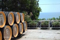 HPIM0851-Massandra-Krim-wijn