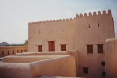 IMG_3768-Niwa-fort