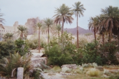 IMG_3769-Ergens-in-het-Hajar-gebergte