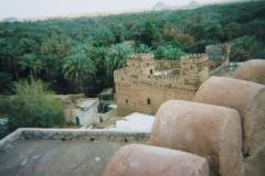 IMG_3867-Jibrin-fort