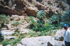 IMG_3868-Wadi-Al-Hams