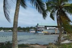 IMG_1381-Panama-wandeling-op-Isla-Carenero