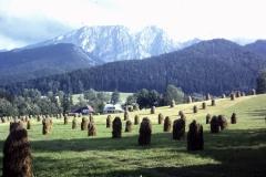 36-35-Zakopane-PL-typisch-landschap-1991