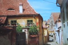 IMG_3475-Sibiu-...