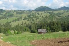 IMG_0278-Weg-Bistritsa-Vatra-Dornei