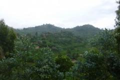 P1050333-Prachtige-natuur-op-weg-naar-Kibuye