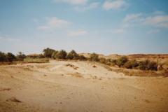 IMG_3745-Oase-Lemsid-25-km-na-Laayoune-op-weg-naar-Smara