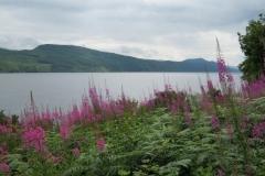 IMG_0537-Loch-Ness