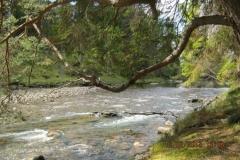 IMG_0028-Zonnig-Schotland