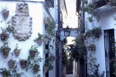 33-36-Cordoba-Callejon-de-las-Flores