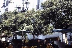35-09-Sevilla-koetsen-bij-Giraldo