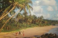 DSC_3928-Beach