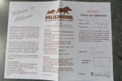 IMG_3677-Mlilwane-horseriding