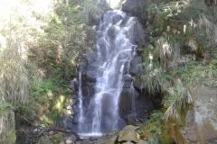 20161113_100658-Waterfall-in-Shann-Garden