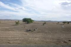 P1050885-Droog-landschap-tussen-Babati-en-Arusha