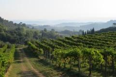 IMG_4293-Van-camping-Boschetto-di-Fiemme-naar-San-Gimignano