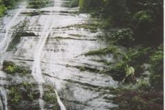 IMG_3335-Caripe-wandeling-naar-waterval-bij-Cueva-Guacharo