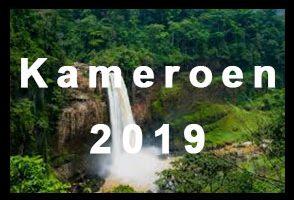 Kameroen 2019